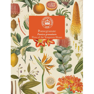 Kew Temperate House Seed Packet: Pomegranate