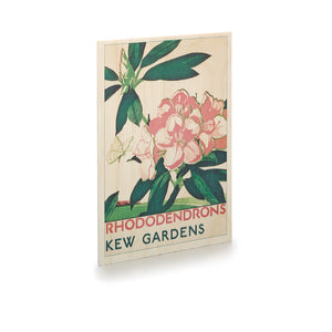 Kew Rhododendrons Wooden TFL Postcard