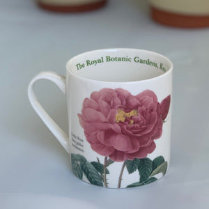 Pink Gallic Rose China Mug