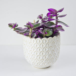 white art deco plant pot