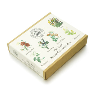 The Kew Scented Garden Seed Box Set