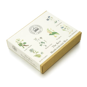 The Kew Shade-tolerant Seed Box Set