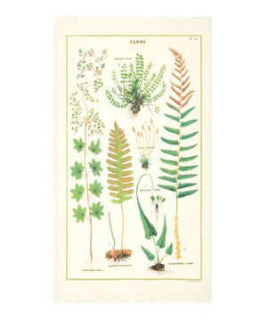 Cotton tea towel with fern print pattern