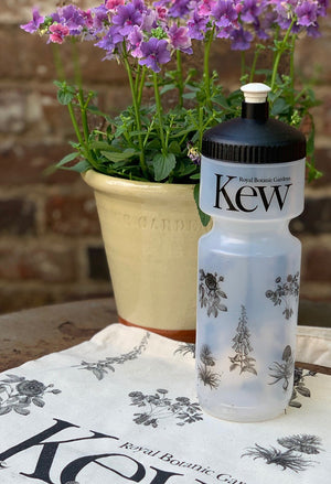 Kew reusable water bottle with clear plastic and black floral design.