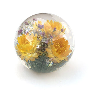 Large paperweight with yellow helichrysum flowers