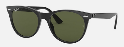Rayban Wayfarer II Black Frame with Classic G-15 Lens (RB 2185) POLARIZED - Shop Escape Outdoors
