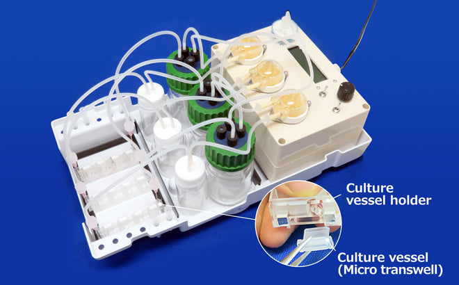 Micro 3D Perfusion Culture System