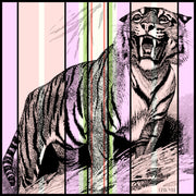 full size illustration of a luxury, bespoke Elwyn New York silk scarf with a fierce tiger and pastel lavender, peach, green, black stripe print