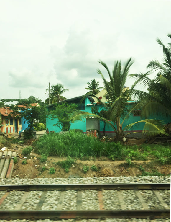 teal house with palm