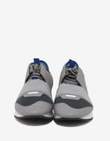 Grey Race Runners