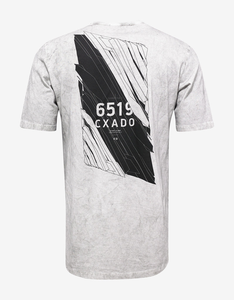 Light Grey Over Dyed Graphic T-Shirt