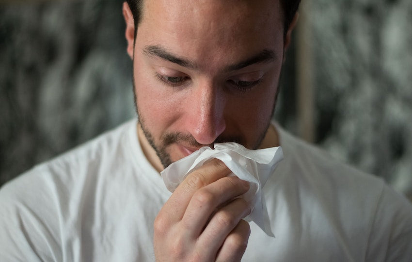 Tips for Improving the Air in Your Home: Allergy Season