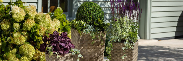 Outdoor living, all weather rattan pots by Hartman