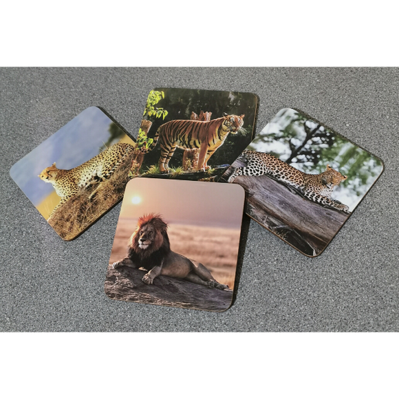 Safari Assorted Set of 4 Coasters