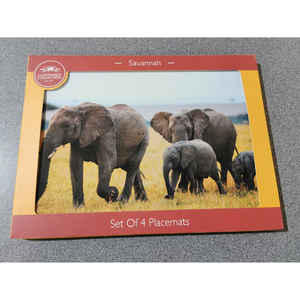 Savannah Assorted Set of 4 Placemats