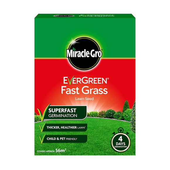Evergreen Fast Grass 56m2