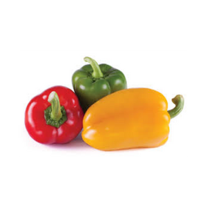 Capsicum Peppers 3 Pack
