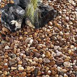 Coastal Pebbles