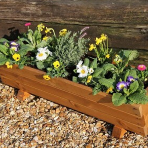 Rosemoor Trough Planter