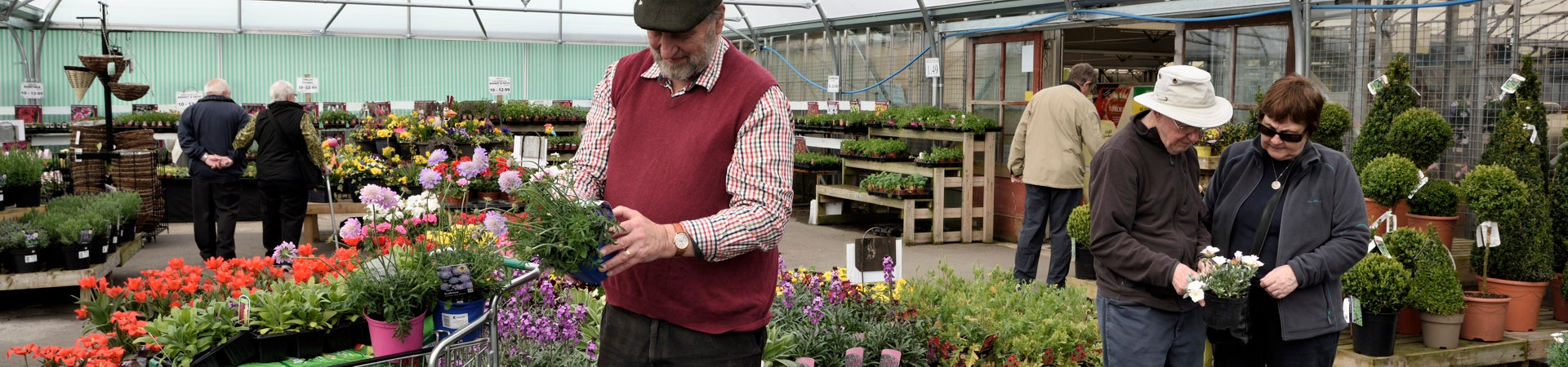 Covered plant sales area at Carr Farm Garden Centre, Wirral