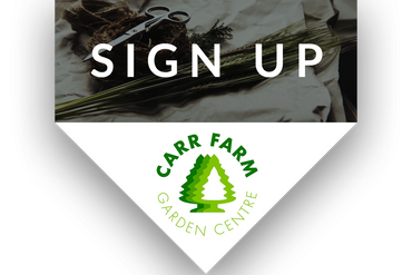sign-up