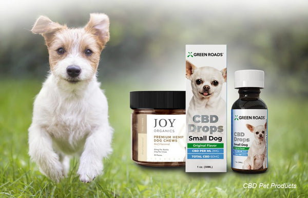 CBD for Pets Dogs Cats Pet Treats Anxiety Support
