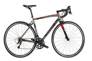 Montegrappa Disc 2018 Frame