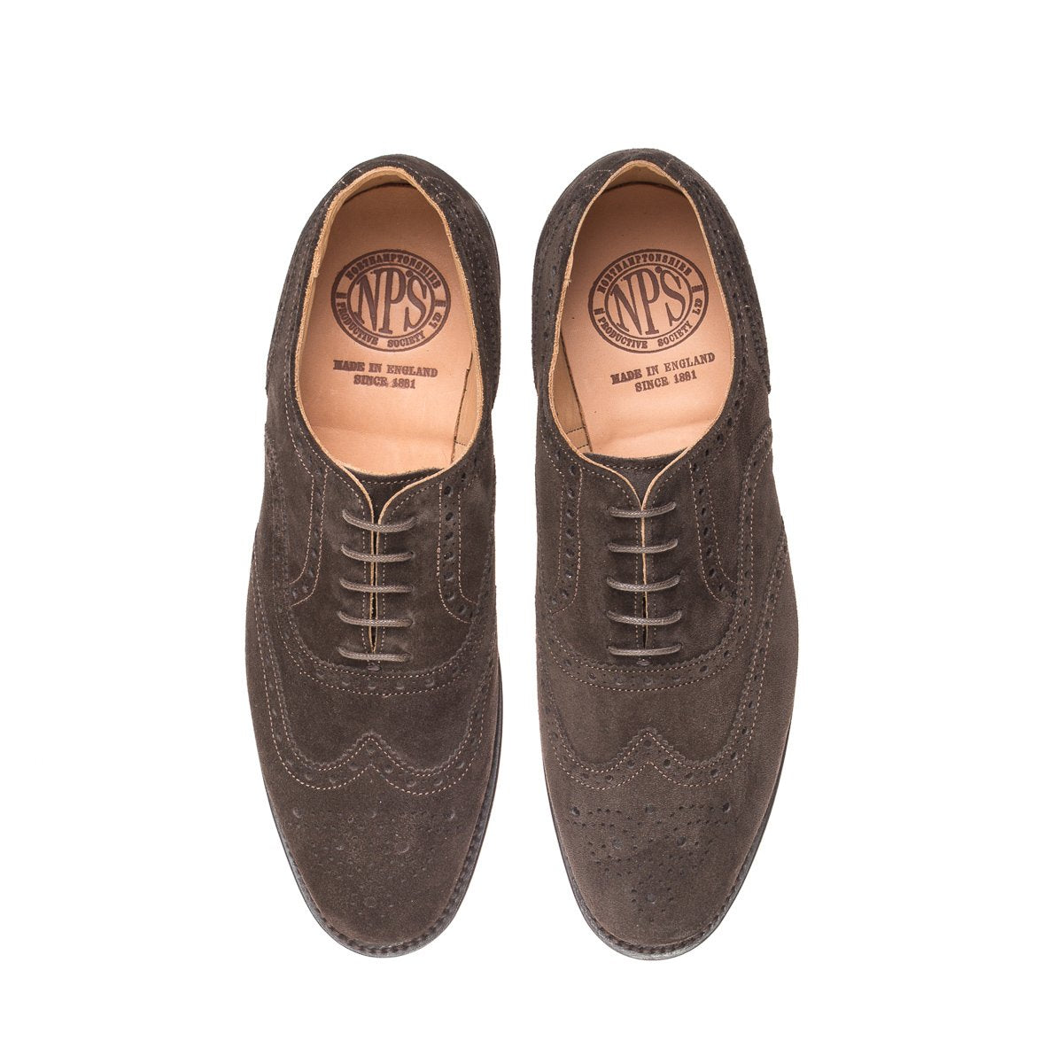 NPS Churchill Oxford Brogue - Chocolate Brown Suede