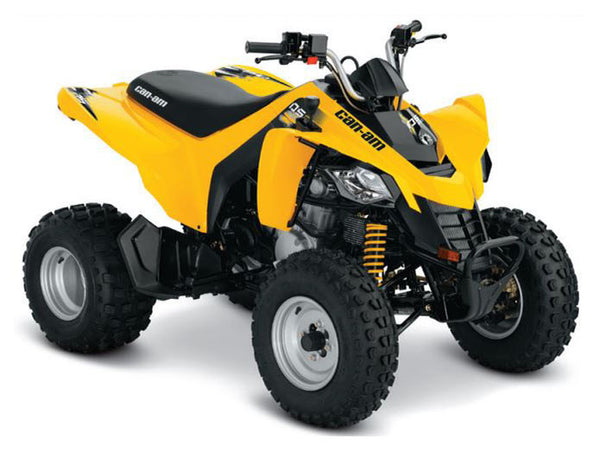 2019 Can-Am DS 250