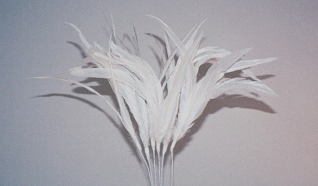 Cocktail Feather - White