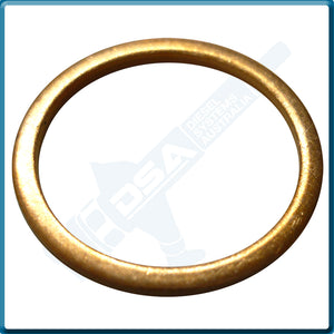 2 916 710 613NG Aftermarket Bosch Copper Washer (22x18x1.5mm) {PKT-10}