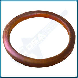 5936-188HNG Aftermarket Delphi Heat Shield Washer (23x20x2mm) {PKT-10}