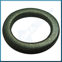 5936-95NG Aftermarket Delphi Steel Washer (13.8x9.7x1.6mm) {PKT-10}