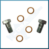 PI-7729 KIT Banjo Bolt (8x1mm) & Washer Kit