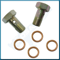 PI-7788 KIT Banjo Bolt (8x0.75mm) & Washer Kit