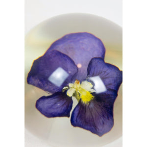 Pansy Paperweight