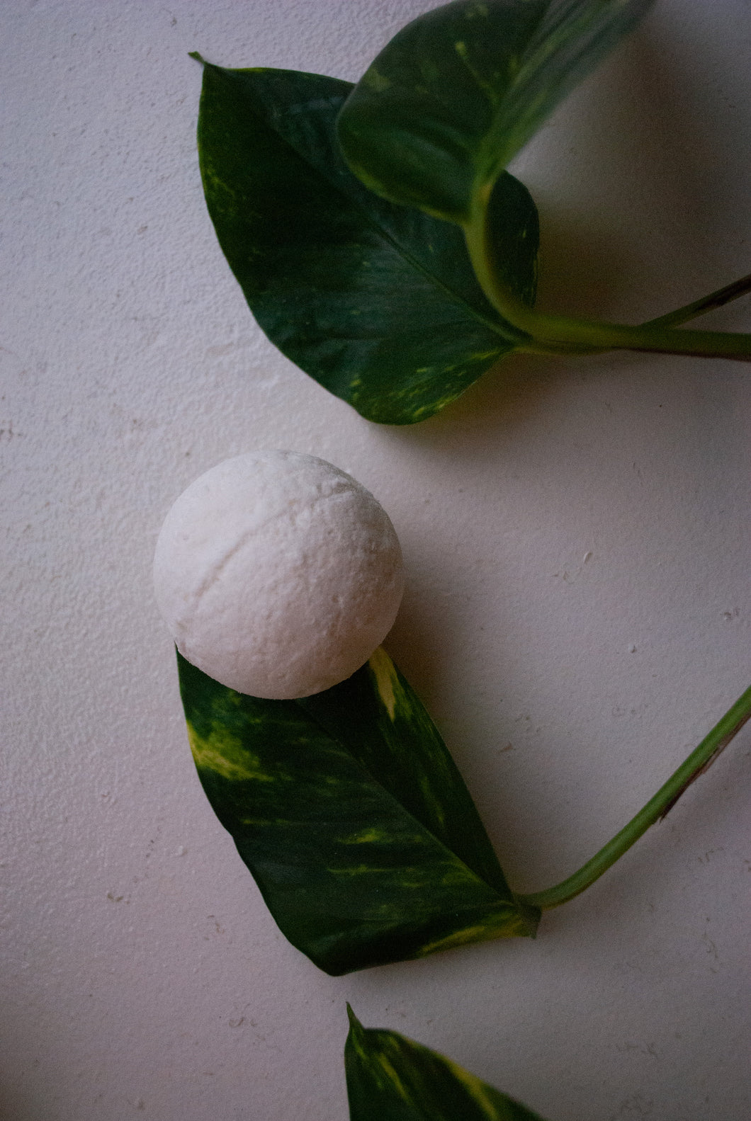 Sweetgrass Bath Bomb by Ojibway Natural