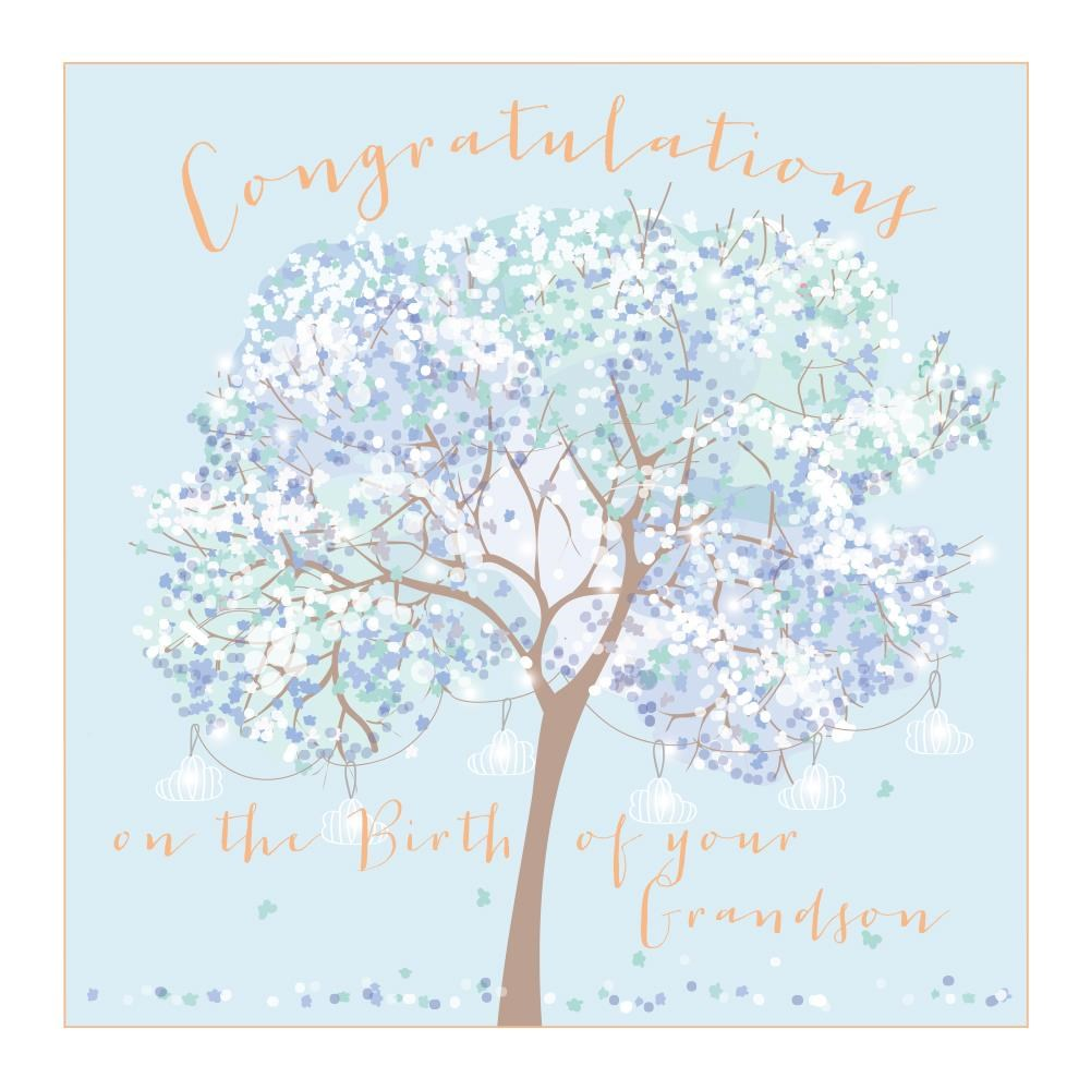 Birth Of Your Grandson Card