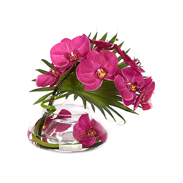 Fuchsia Phalaenopsis & Palm in Small Reversed Bowl