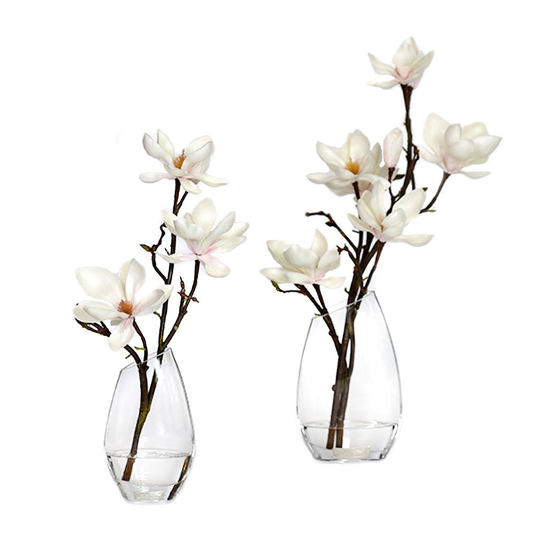 "Champagne magnolia Illusion Water Curve Vase • 2 Sizes (8""H & 10""H)"