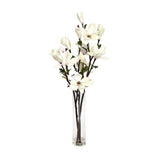 "Champagne Magnolia Illusion Water Rota Vase • 3 Sizes (8""H, 12""H & 16""H)"