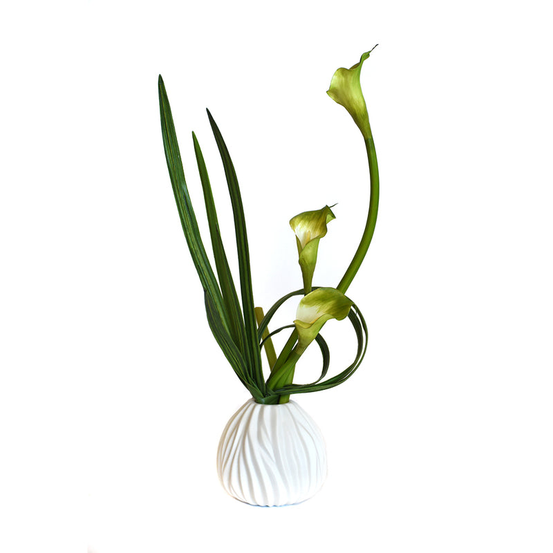 Green Calla Lily with Leaf In White Vase