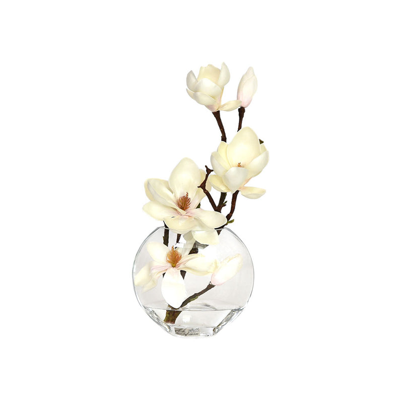 "Champagne Magnolia illusion Water Moon Vase 6.5""H"