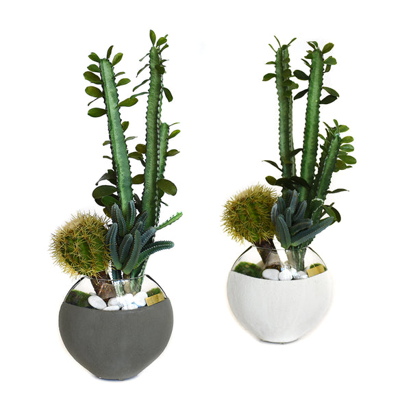 Cactus Garden in Concrete and Glass Moon Vase SM • 2 Color
