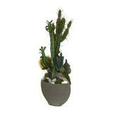 Cactus Garden in Concrete and Glass Moon Vase MD