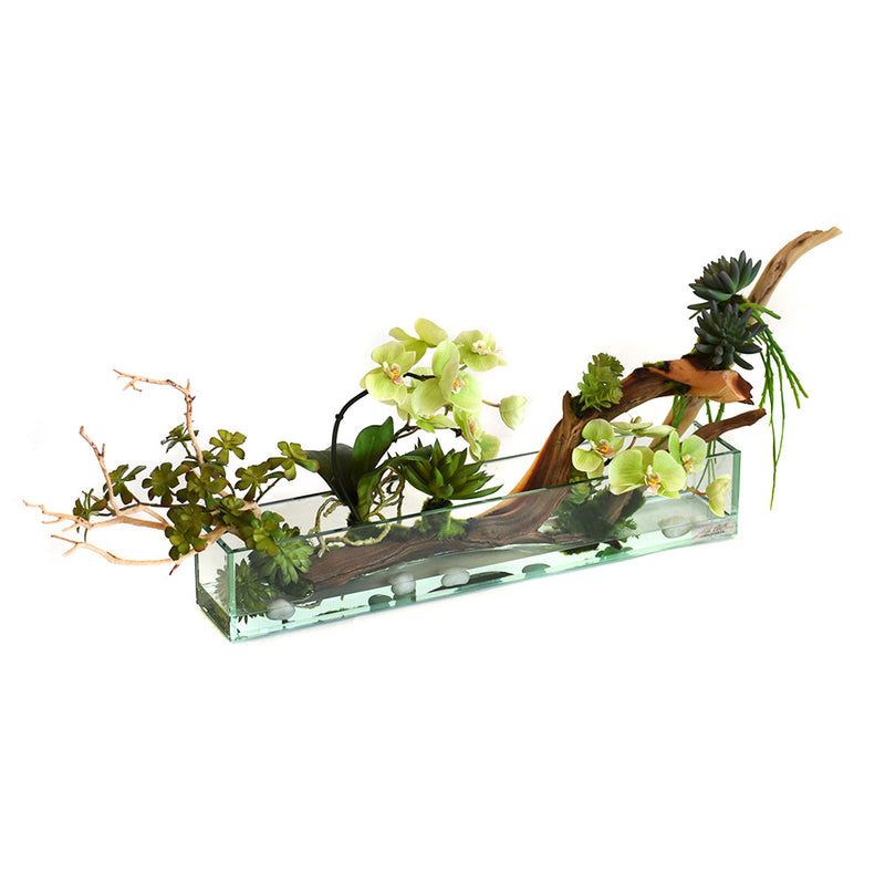 "Green Phalaenopsis & Wood with succulent 24"" Plate Glass Planter"