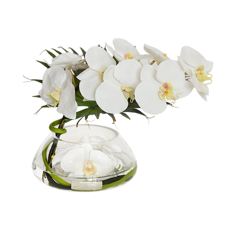 White Phalaenopsis & Palm in Small Reversed Bowl