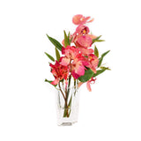 "Fuchsia Bush Bougainvillea & Phala w/ Bamboo in 5""H Diamond Vase"
