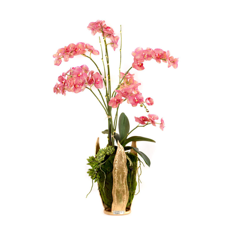 Pink/Yellow Phalaenopsis Garden in Tulip Gold Leaf Vase