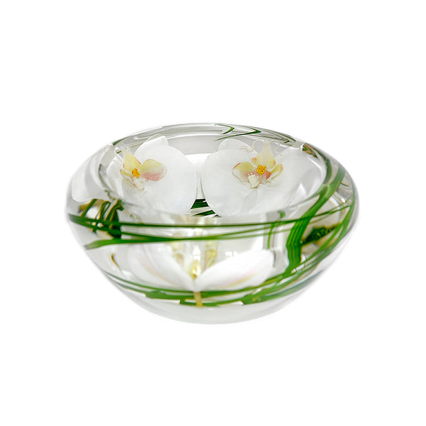 White Phalaenopsis Flower Bowl